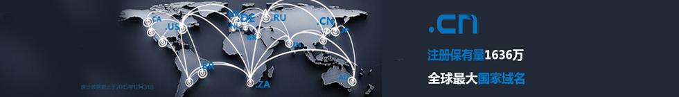 """中国国家域名"""".CN""""注册保有量跃居全球ccTLD第一"""