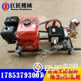 QZ-2B型汽油取样钻机 中国巨匠地质勘探钻机现货供应