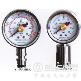 矿用双针耐震压力表BZY-50/BZY60