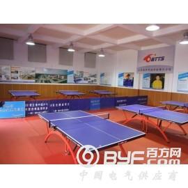 供应各种类型乒乓球馆室内场馆照明灯图片