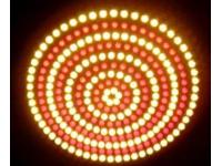 LED灯成安全隐形杀手?台交通部将修法纳管