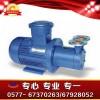 CWB磁力旋涡泵,长春市磁力泵,英科磁力泵厂家