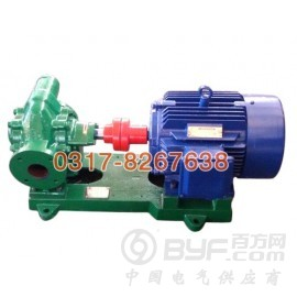 沧州哪里能买到优质KCB齿轮油泵 江苏KCB不锈钢齿轮泵
