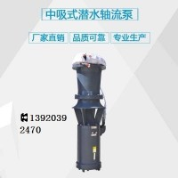 天津中吸型潜水轴流泵