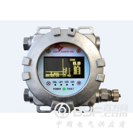 ESP SAFETY气体探测器