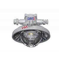 DGS36/36L(A)矿用隔爆型LED巷道灯井下照明灯