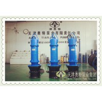 800QZB潜水轴流泵-工业过程用水排放