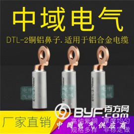 圓頭DTL-2銅鋁鼻子 鋁合金電纜線鼻子 光伏銅鋁過渡