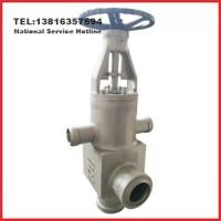 H62Y高压加热器用止回阀